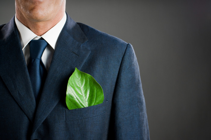 Some leading lights in the fashion business are trying to improve the industry's green credentials